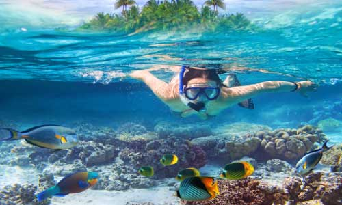 learn-how-to-snorkel